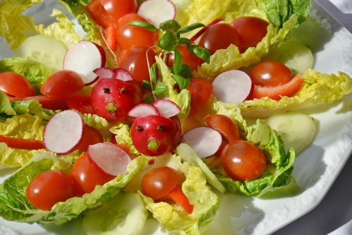 %ed%81%ac%ea%b8%b0%eb%b3%80%ed%99%98_salad-1477486_1920